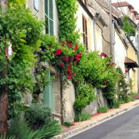 rue dans le village de La Roche-Guyon